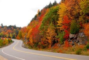 Droga w północnym Ontatio w Kanadzie